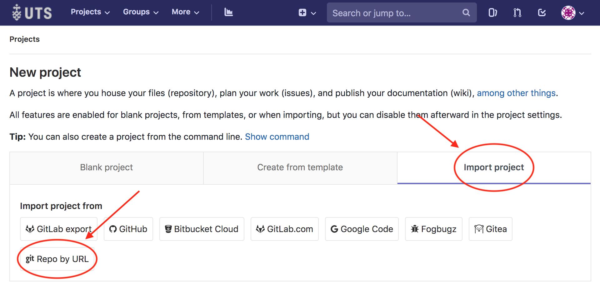 Git and GitLab - DSM Code